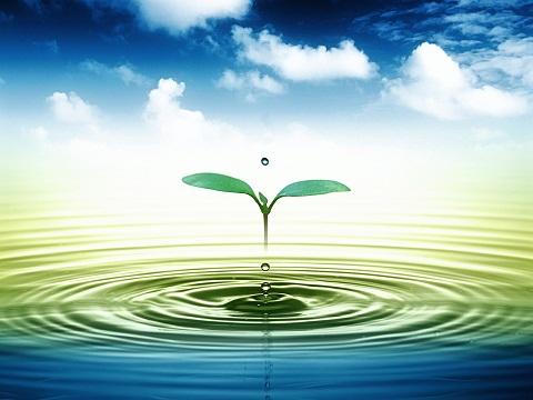 hệ thống lọc nước tinh khiết đầu nguồn 2